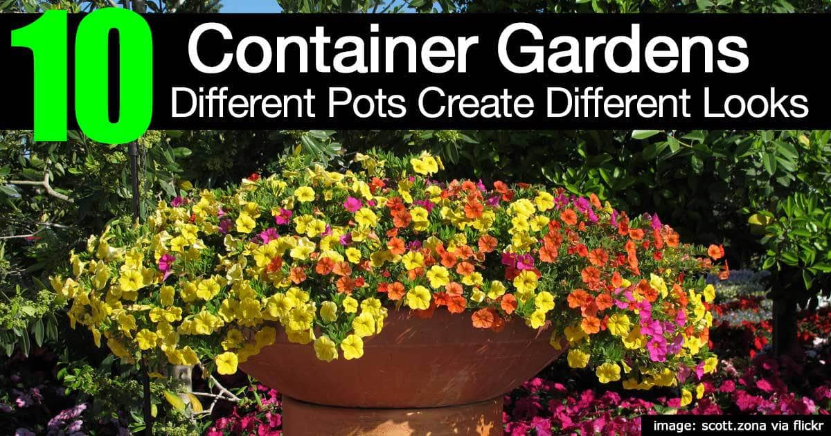 10 Different Container Garden Pots Creating Different Looks