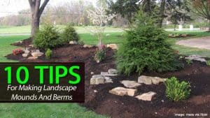 landscaping berm