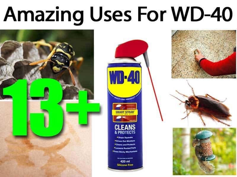 13-uses-wd-40-073114
