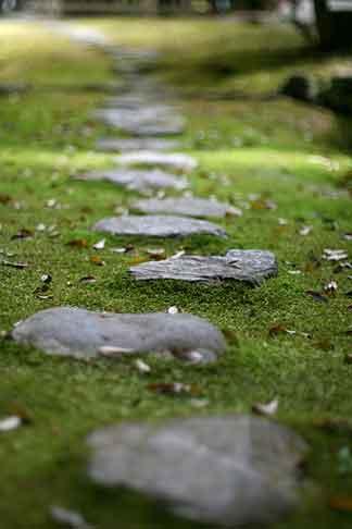 1564 Stone Steps