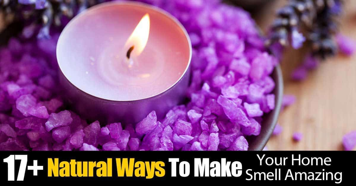 17 natural ways to make your home smell amazing for Things to make your house smell good
