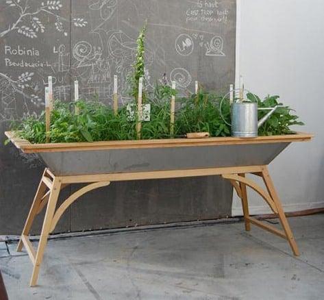 Indoor Herb Garden Apartment