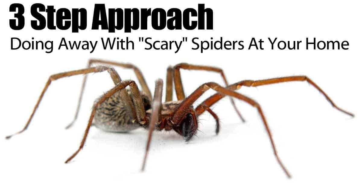 3-steps-spider-083114