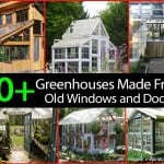30 + Greenhouses Made From Old Windows and Doors