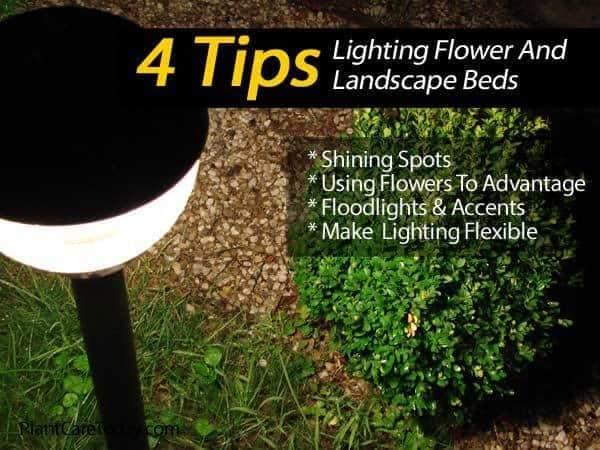 tips on lighting landscape beds