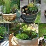 16 Mini Ponds In Pots That You Can Make This Weekend