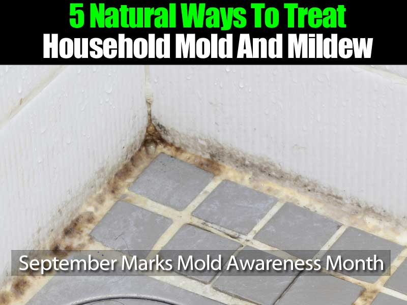 how to kill household mold