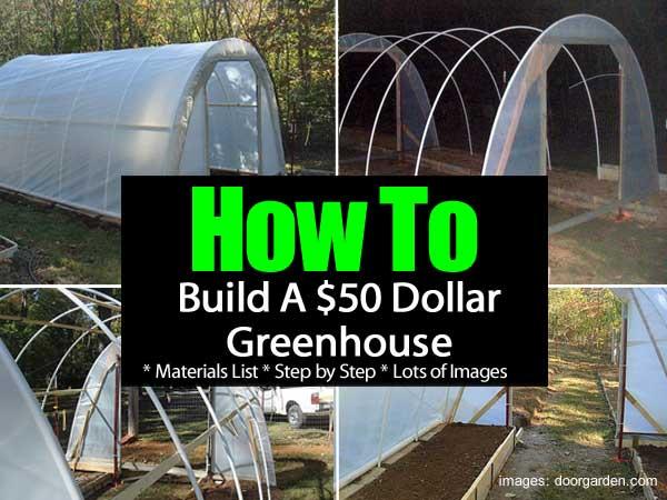 50-dollar-greenhouse-053114