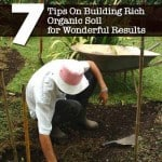 7 Tips On Building Rich Organic Soil for Wonderful Results