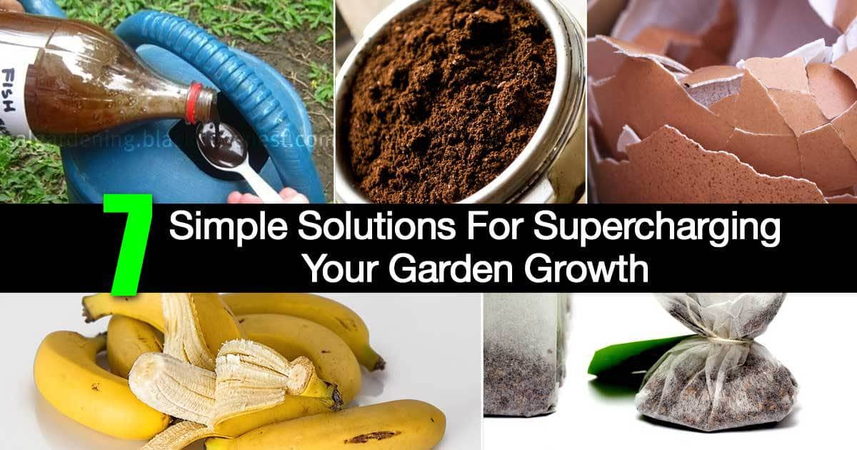 7 items that can supercharge garden soil