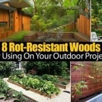 8 Rot-Resistant Woods For Using On Your Outdoor Projects