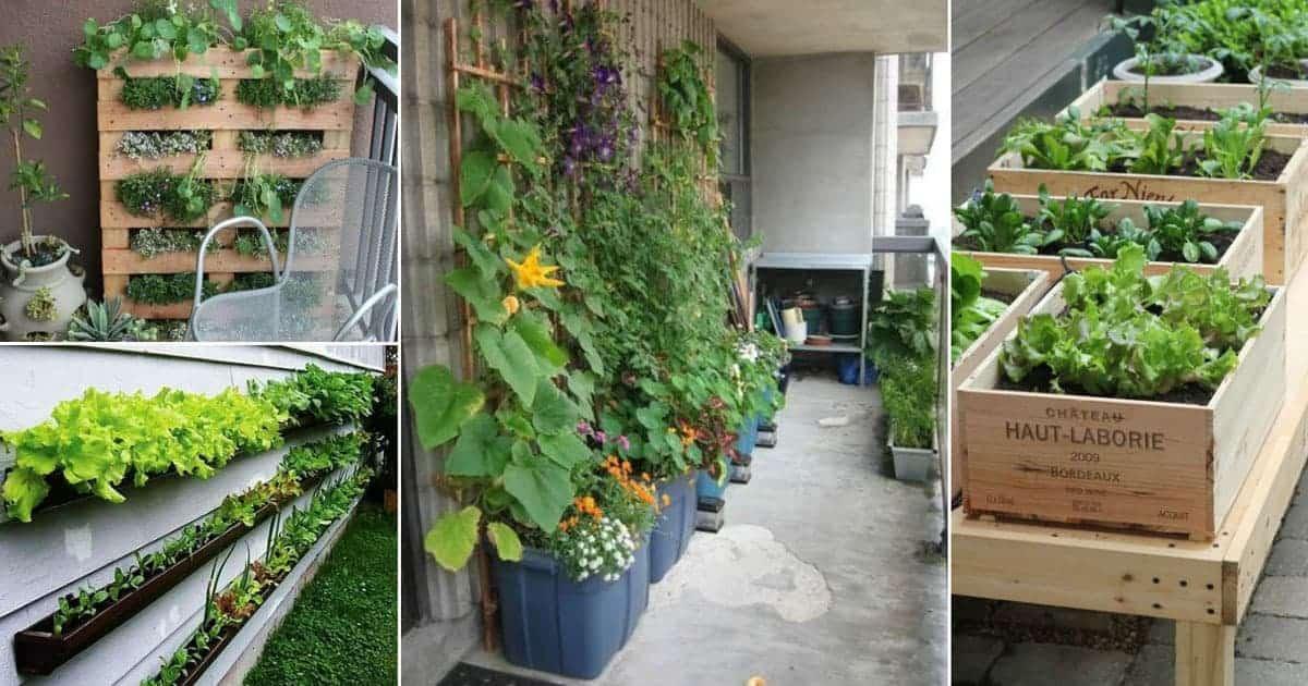 No Garden Gardening 10 Ideas For Your Patio Or Balcony
