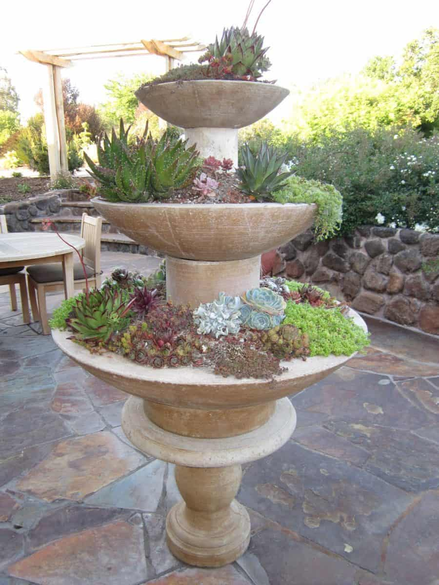 Succulent Fountain Ideas How To Convert A Fountain To A