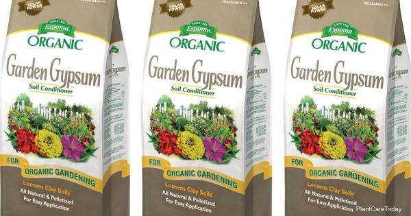 Bag of Garden Gypsum To Amend soil
