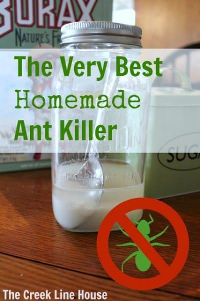 ant-killer-010114