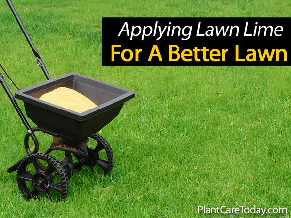 apply-lime-lawn-031514
