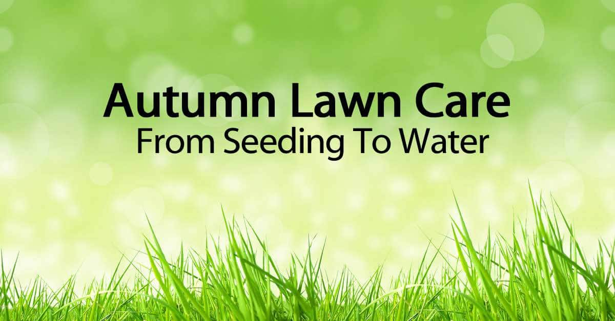 autumn-lawn-care-093014