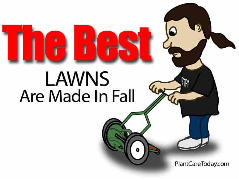 best-lawns-made-fall-073114