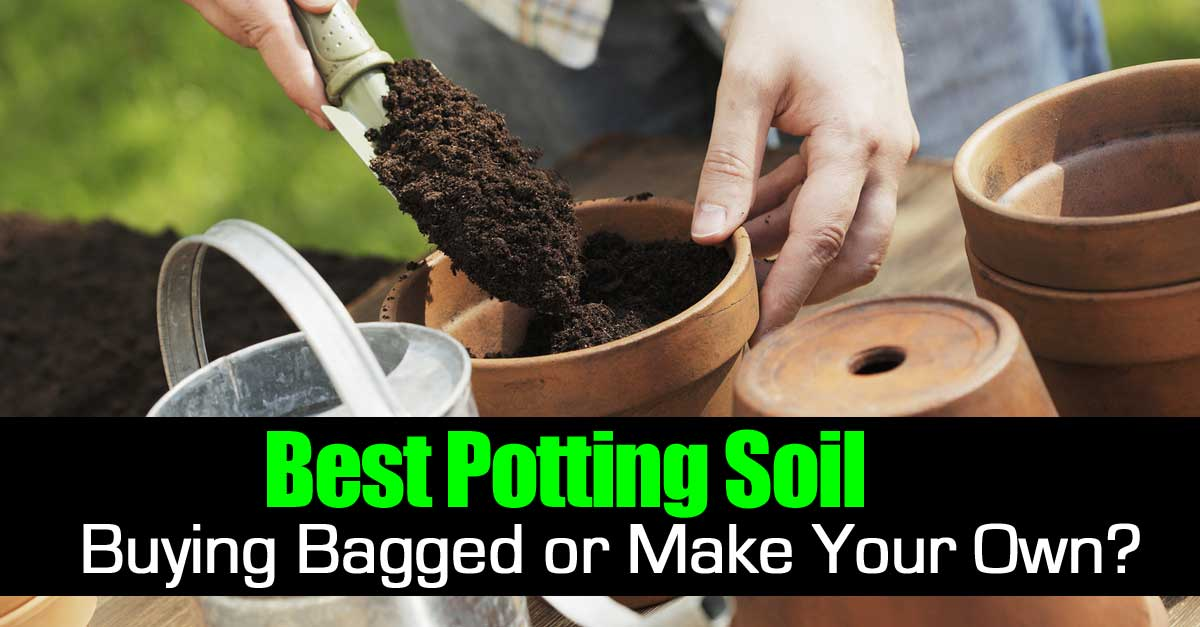 The Best Potting Soil Ing Bagged Or Make Your Own