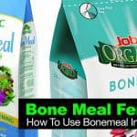 Bone Meal Fertilizer: How To Use Bonemeal In The Garden