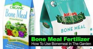 Bag of bone meal fertilizer