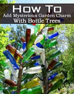 How To Add Mysterious Garden Charm With Bottle Trees