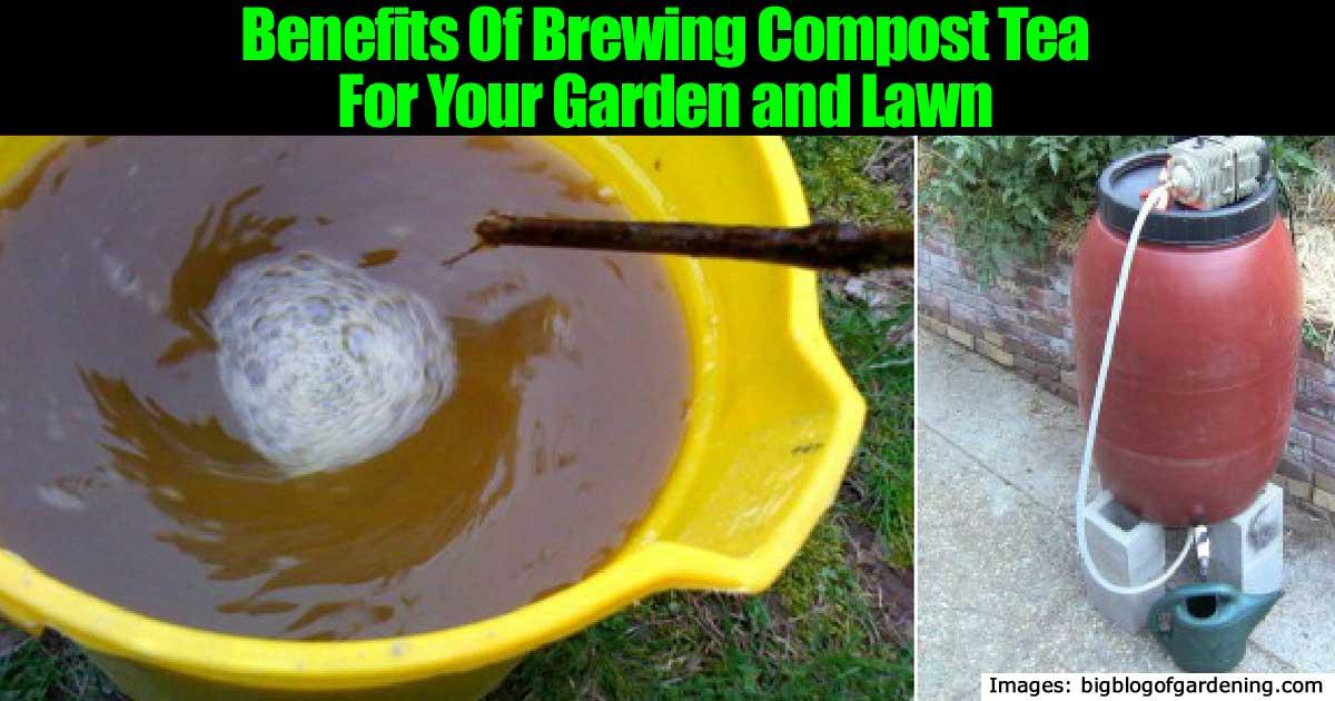 brewing-compost-tea-22820151103