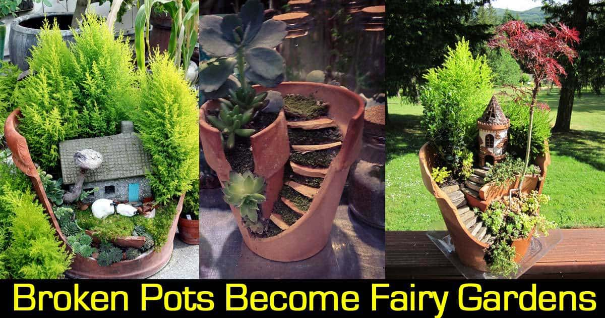 Broken Pots Become Fairy Gardens
