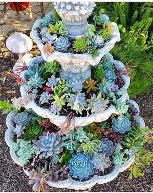 Succulent Fountain Ideas: How To Convert A Fountain To A ...