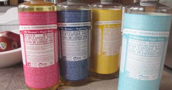 castile soap for a low cost insecticide soap