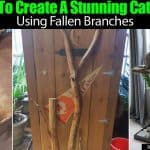 How To Create A Stunning Cat Tree Using Fallen Branches