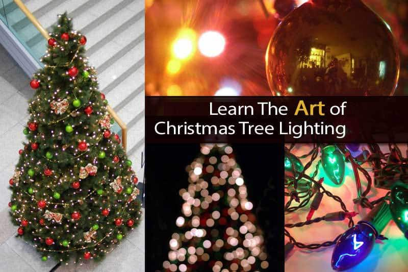 christmas-tree-lighting-112613