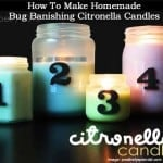 citronella-candles-010214
