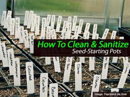 clean-saanitize-pots-013114