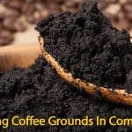 Coffee Grounds In Compost: What Are The Benefits?
