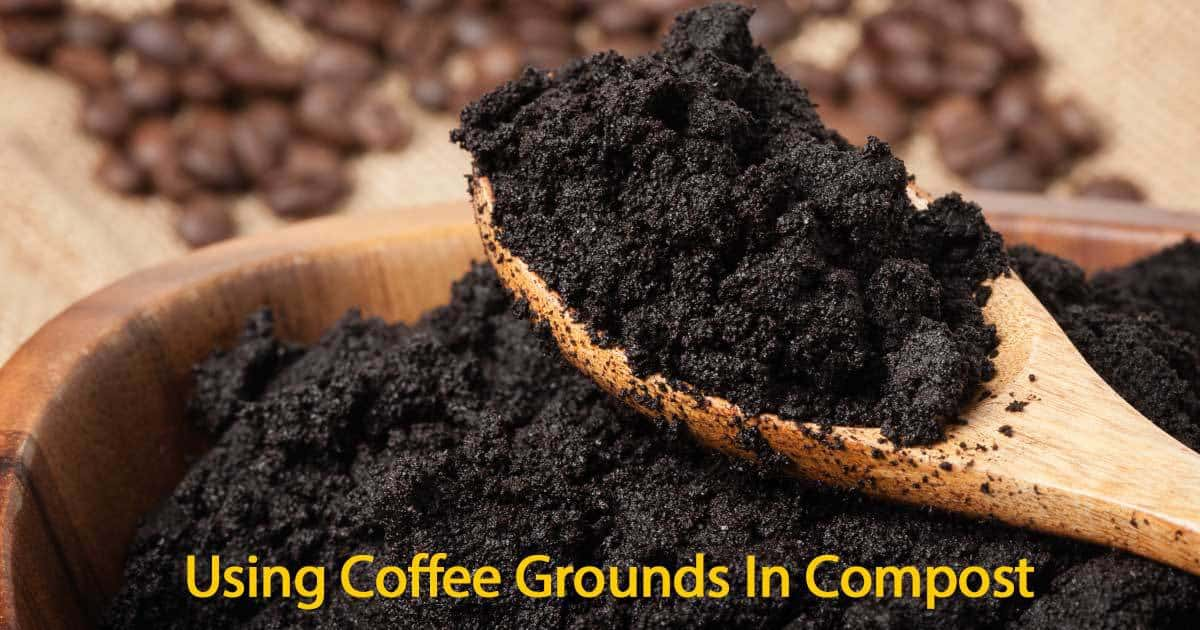 Coffee grounds in compost what are the benefits for How to use coffee grounds in garden