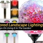 Tips On Using Colored Landscape Lighting In The Garden