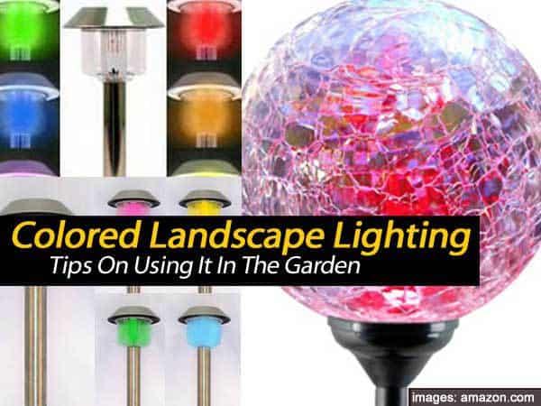 colored landscape lighting