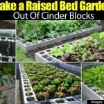 Making A Raised Bed Garden Using Cinder Blocks