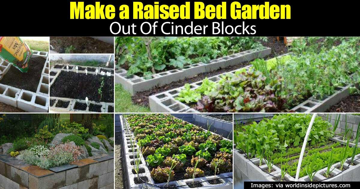 making a raised bed garden using cinder blocks - Cinder Block Raised Garden Bed