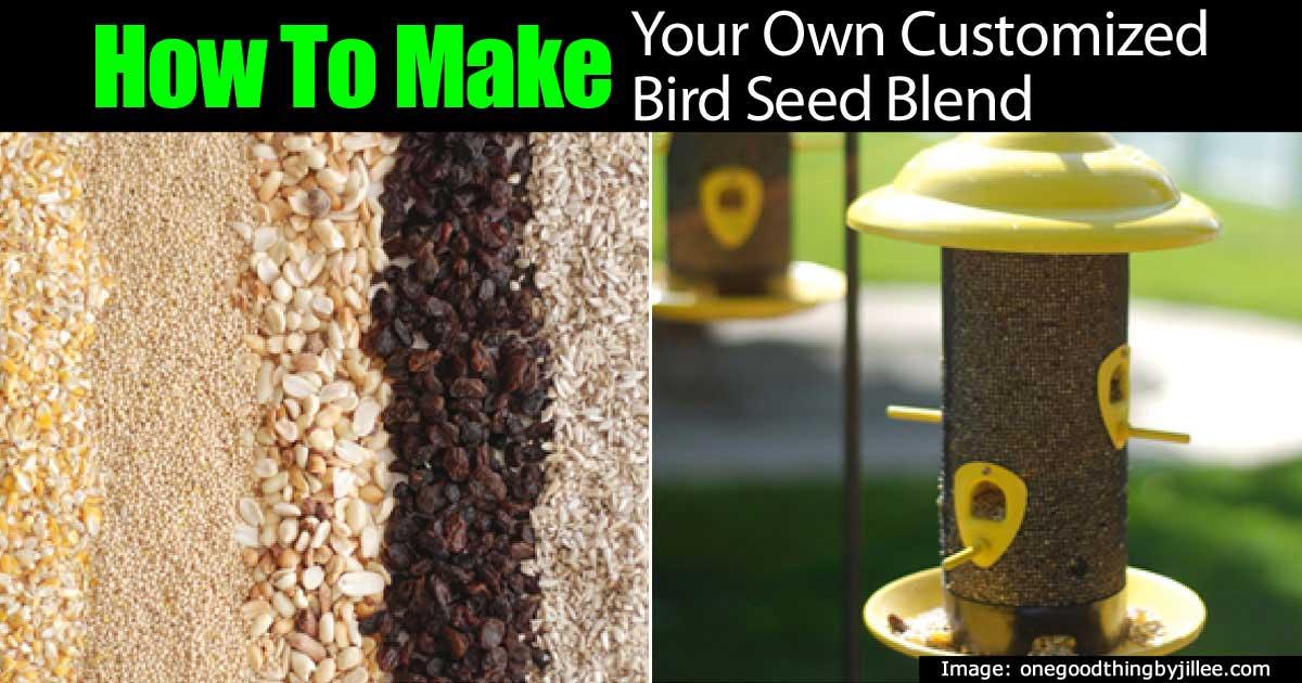 20 mejores alimentadores caseros de aves que puede hacer
