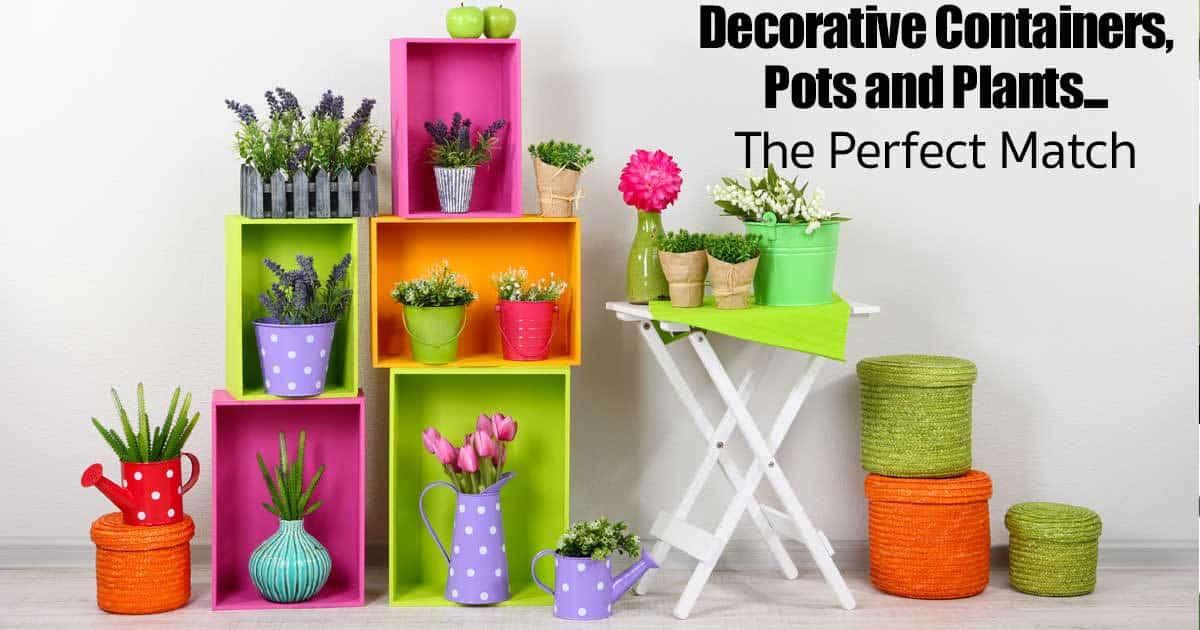 maceta de recipientes decorativos - fósforo-09302015