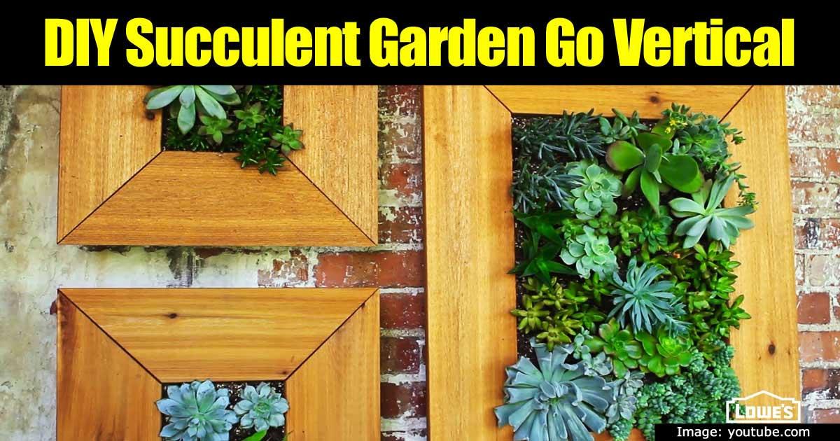 diy-vertical-succulent-garden-93020152216