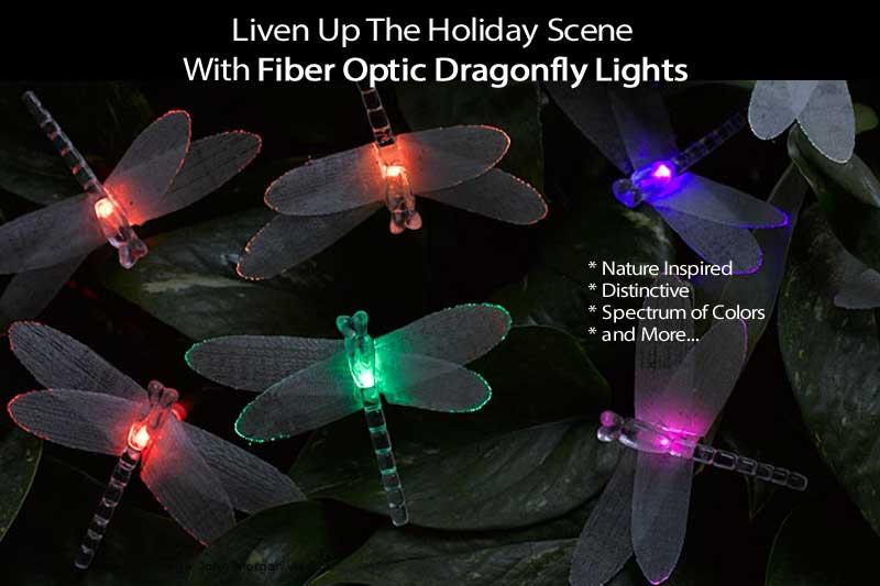 dragonfy-lights-111513