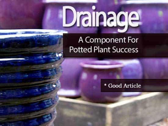 drainage-101213