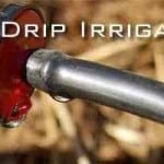 Drip Irrigation Systems – Efficient EcoFriendly Watering