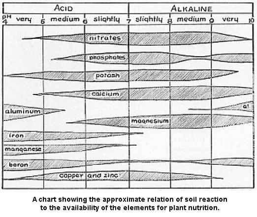 element-soil-reaction