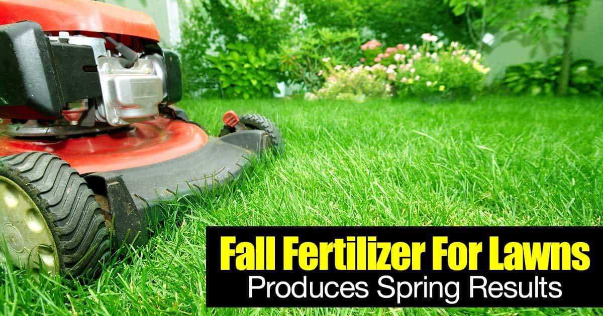 fall fertilizer for spring resuts