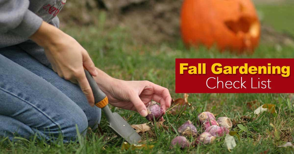 fall gardening ideas checklist