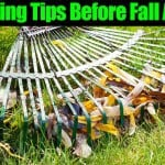 Fall Gardening Tips – What To Do Before Fall Arrives